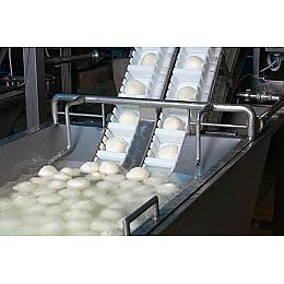 Mozzarella Production - Foodservice Application